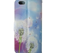Dandelion Pattern PU Leather Flip  Protective Case with Magnetic Snap and Card Slot for iPhone 5C