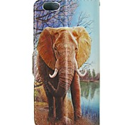 Animals Elephant Pattern PU Leather Flip  Protective Case with Magnetic Snap and Card Slot for iPhone 5C