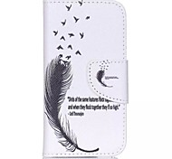 Black feathers Painted PU Phone Case for ipod touch5/6