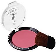 8 Rouge Trocken PuderFarbiger Lipgloss / Feuchtigkeit / Öl Kontrolle / Lang anhaltend / Concealer / Unebener Hautton / Natürlich /