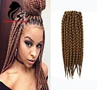 marley tressage des cheveux tresses torsadées afro dreadlocks crochet tresse torsion sénégalais tresse les cheveux