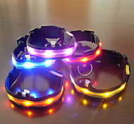 Dog Collar LED Lights / Adjustable/Retractable Green / Blue / Purple / Orange Plastic / Textile