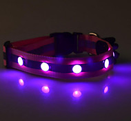 Fashion LED Pet Collar