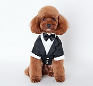 Dog Tie / Shirt Black Summer Britsh Wedding / Holiday, Dog Clothes / Dog Clothing-Lovoyager