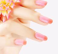 ekbas rot und pink polier 16ml Nagel Nagelkleber Farbgradient
