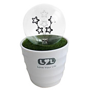 Pot Starry LED Night Light