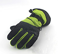 Winter Gloves Unisex Keep Warm Ski & Snowboard / Snowboarding Green / Red / Pink Canvas Free Size-Others
