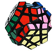 / Smooth Speed Cube Megaminx / Magic Cube Rainbow ABS