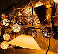 New LED Chinlon Light String Of Holiday Garden Landscape Lamp Series 10Lamp Holder