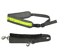 Leash Adjustable/Retractable Reflective Running Mesh