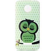 Back Cover Pattern Sleeping Owl TPU Soft Case Cover For Motorola Moto Z  Moto Z Force