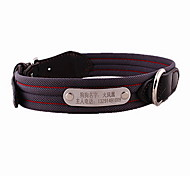 Dog Collar Adjustable/Retractable Solid Black Nylon