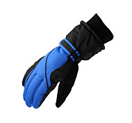 Winter Gloves Men's Keep Warm Ski & Snowboard / Snowboarding PU