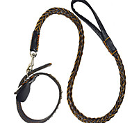 Leash Casual Solid Genuine Leather