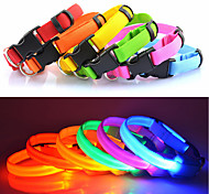Cat / Dog Collar LED Lights / Adjustable/Retractable Solid Red / White / Green / Blue / Pink / Yellow / Orange Nylon