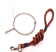 Collar Leash Casual Solid Textile