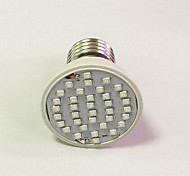 E26/E27 LED Grow Lights 36 260-312 lm Red Blue AC 85-265 V 1 pc