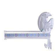 Aquarium Aquarium Decoration Blue Non-toxic & Tasteless LED Lamp 220V