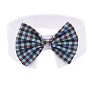 Кошка пояс/Бабочка Одежда для собак Косплей На каждый день Английский сетка