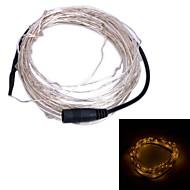 Xinyuanyang®  6W 100-0603 SMD LED Warm White Light String Light - Silver + Black (DC 12V / 1000cm)