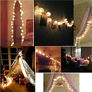 Storm Warm White Rattan Ball Fairy String Lights for Party Holiday Home Use With Battery box 20 Rattan Balls(2M)