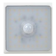 Dg-Rdj 5W 6000K/3000K Cold White/Warm White Human Body Induction Lamp Footlights(Ac220V-250V)