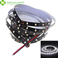200cm 10W 120x3528SMD White / Cool White  Light LED Strip Lamp for Car (DC 12V)
