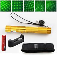 2 in 1 532nm groene laser pointer 5 MW hoog vermogen oplaadbare 18650+ holster goud