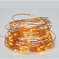 10M 100LED USB String Lights with 2M USB Cable