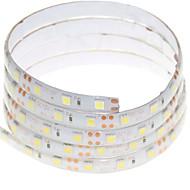 1m 60x5050led 15W fleksible LED lys strimler varm hvid / hvid / RGB / rød / gul / blå / grøn vandtæt DC12V