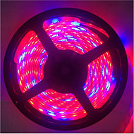 5m 5red1blue 300LED smd5050 IP65 hydrocultuur systemen geleid plant te kweken licht waterproof led (12V)