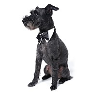 Hunde Krawatte/Fliege Hundekleidung Sommer Frühling/Herbst Schleife Niedlich Hochzeit Weiß Schwarz Orange Gelb Grün
