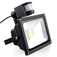 AC85-265V 20W Cold White / Warm White 2000LM Infrared Human Body Induction LED Floodlight1Pc