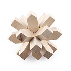 ronde en bois pull-dehors iq puzzle (18 pièces)
