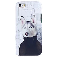 Mooie Hond met doekpatroon Terug Case voor iPhone 5/5S