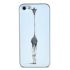 Giraffe Pattern Hard Case for iPhone 5/5S