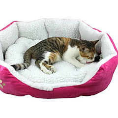 PethingTM Dog Footprint Style Pet Bed (Assorted Colors, 50x40x10CM)
