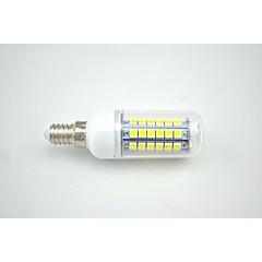 Lampadine a pannocchia 69 SMD 5050 T E14 5.5 W 828lm LM Bianco caldo / Bianco 1 pezzo AC 220-240 V