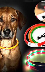 Kaulapannat - Nailon - LED valot - Punainen / Vihreä / Sininen / Keltainen - Koirat -