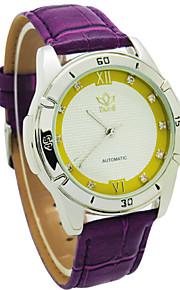 Relógio Elegante ( Cronógrafo ) - Analógico - Quartz