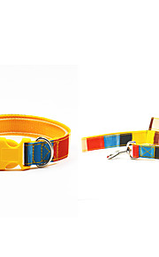 Oxford-The Colorful Pet Collar and Leash Suit (Assorted Sizes)