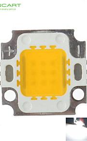 10W 900LM White/Warm White 3000K/6000K High Bright LED Light Lamp Chip DC 9-12V