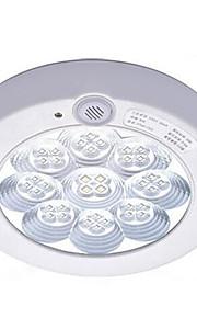 Plafonniers Blanc Froid LED 1 pièce