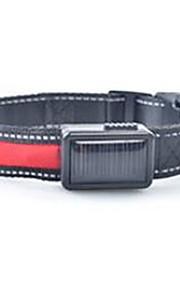honden Kraag LED verlichting Oplaadbaar Effen Rood Wit Groen Blauw Roze Geel Oranje Nylon