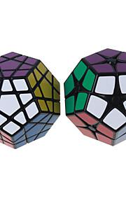 Shengshou® Let Glidende Speedcube MegaMinx Hastighed Professionelt niveau Magiske terninger Sort Elfenbenshvid glat StickerAnti-pop