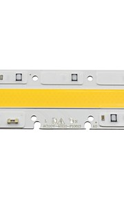 ledコブ電球ランプライト50w 110vスマートIC diy led洪水ライトコールド/暖かい白(1個)