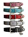 Crocodilo legal listra padrão de metal colar de couro com pingente PU Amor Nice (XS-L)