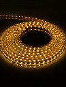 5M 300x5050SMD 3000K Warm White Light PCB Vanntett LED stripe lys med Plug (220V)