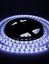 Impermeable 60W 5M 60x5050SMD 3000-3600LM 6000-7000K lumiere blanche fraiche LED Light Strip (DC12V)