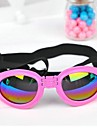 Dog Sunglasses - XL - Spring/Fall - Red / Black / White / Pink / Yellow - Waterproof - Plastic